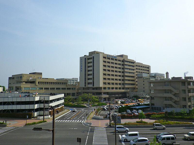 体外受精の病院選び。私が今の病院に決めた理由。違いや評判、成功率など。